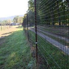 plastic mesh vertical deer fence, Alan Eaton