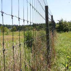 wire mesh deer fence, Alan Eaton
