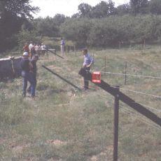 Slanted deer fence, Alan Eaton